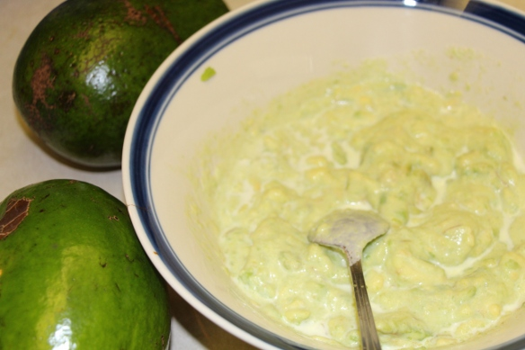 avocado dessert photo